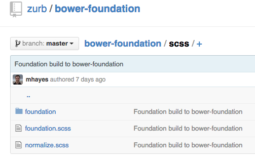 Bower Foundation Repo Scss